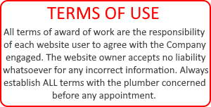 Terms of website use