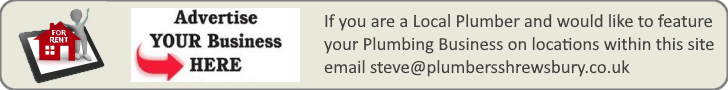 Advertising banner for plumbing businesses to rent pages