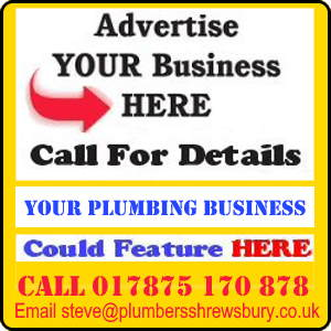 Advert offering rental of pages to local plumbing businesses.